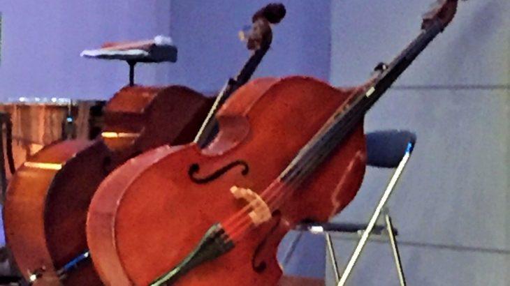 ウッドベースを始めたい!ジャズ初心者の楽器選び